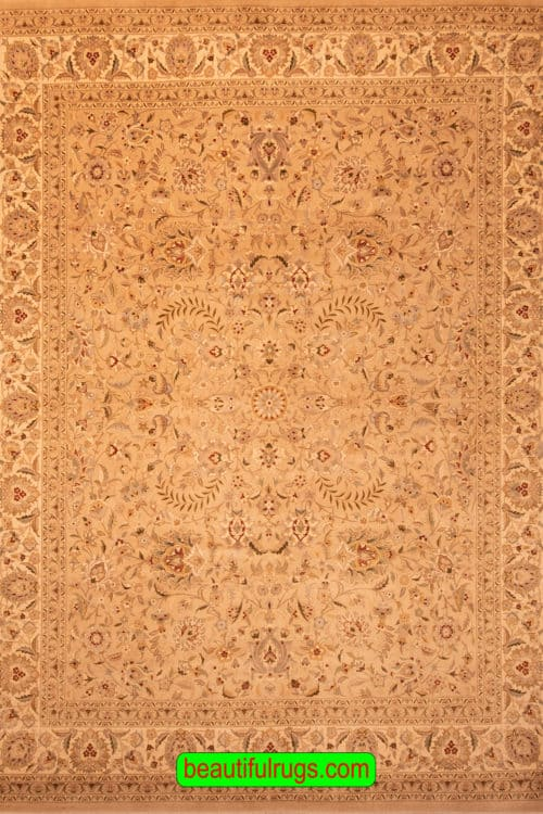 Hand Knotted Rug, Transitional Style Oriental Rug, Earth Tone Color Rug, size 8.3x10.5, main image